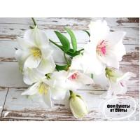 мастер класс по изготовлению цветка альстромерии.